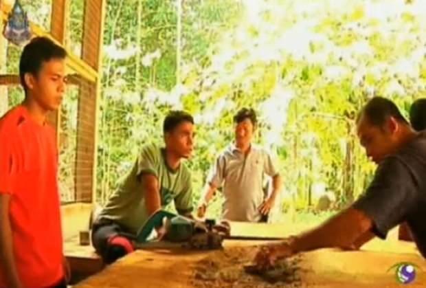 Die jungen Männer erlernen das Schreinerhandwerk.