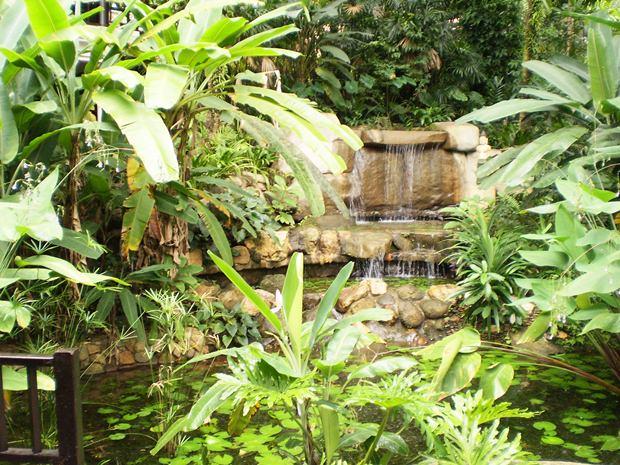 Viele Hotelanlagen zieren sich mit tropischen Gärten.