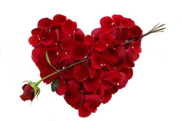 Wir wünschen  allen unseren Lesern einen schönen und verliebten Valentinstag!