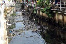 Klong Nok Yang Einwohner führen Beschwerde gegen die Umweltverschmutzung des Klong.