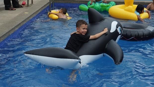 Kinder verschiedener Wohlfahrtsorganisationen haben jede menge Spaß im Pool.