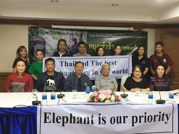 """""""Elefanten haben bei uns Vorrang"""" heißt es auf dem Banner."""