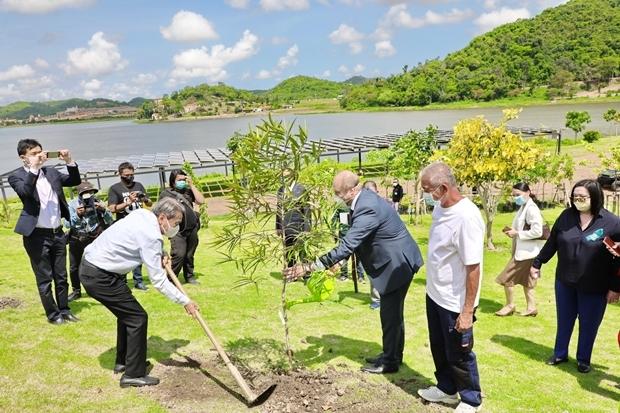 Vizebürgermeister Ronakit Ekasingh und Nong Nooch Tropical Garden Direktor Kampol Tansajja, pflanzen die Bäumchen gemeinsam mit den Angehörigen von 5 Botschaften am Fusse der Huay Toh Reservoirs.
