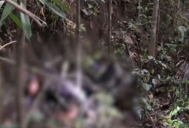 Die Leiche einer Ukrainerin wurde im Gebüsch auf Koh Samui aufgefunden.