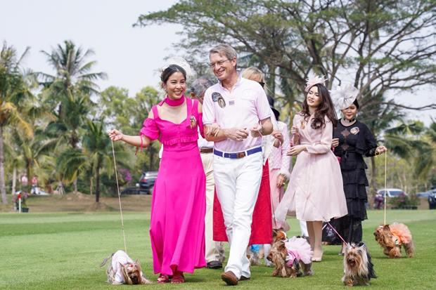 Yorkshire vom Yorkshire Terrier ClubThailand angeführt bei Khun Namhom, Dem Hund von IKH der Prinzessin.